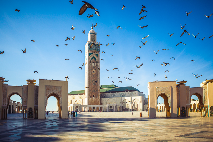 pigeons soar over the area of the mosque Hassan II in Casablanca, Morocco.